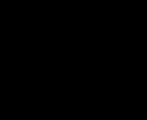 La Profe Plotts black logo